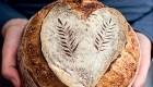 Kruh z drožmi naslovnica