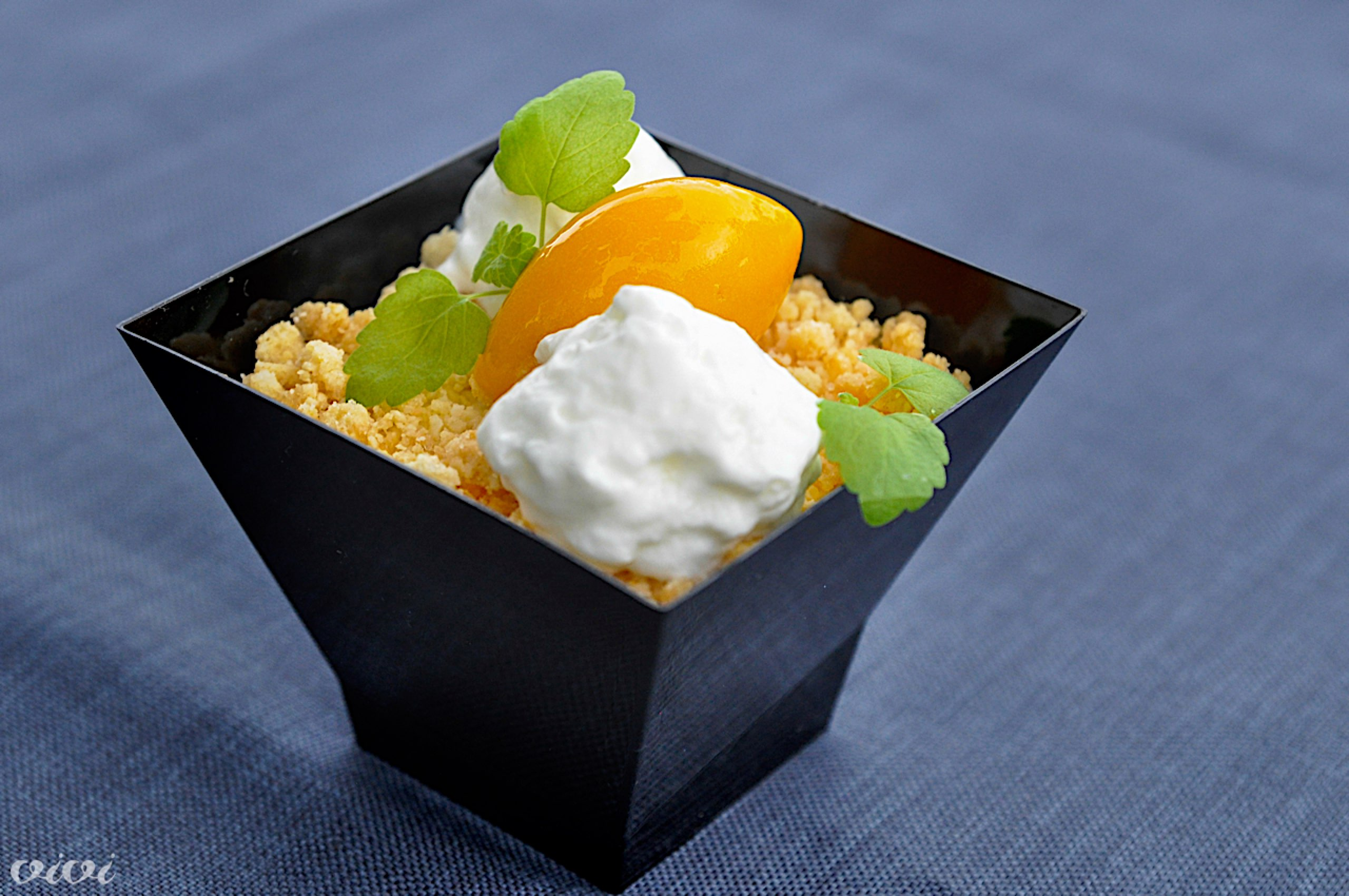 sladolent8 kovac mangov sorbet jogurtov mousse3