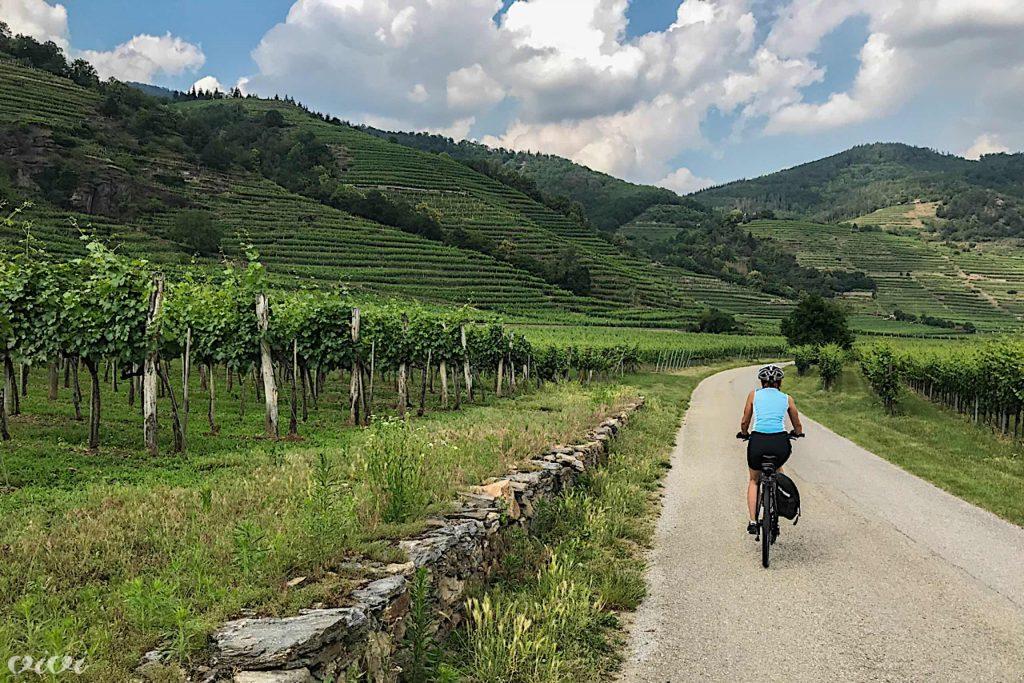 wachau vinogradi kolo 3