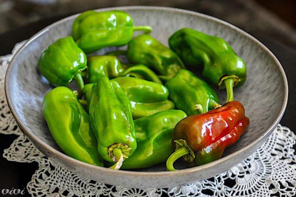 domače jalapeno paprike3